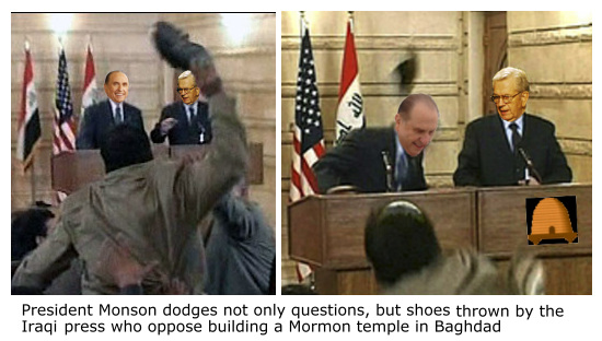 Bush Shoe Throw 15